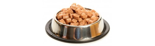 canned food for dogs