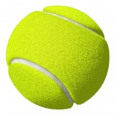 Squeaky Balls 2ks tenisák 6,5cm
