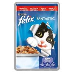 FELIX Fantastic Adult s hovězím v želé 100g